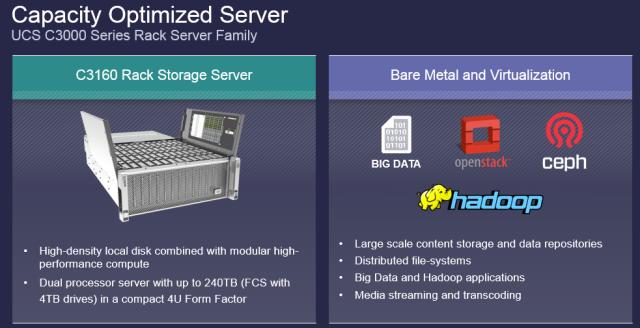 C3160 Rack Server